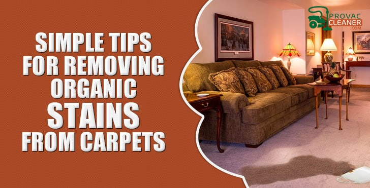 Removing Organic Stains
